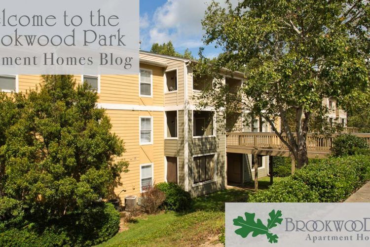 Welcome to the Brookwood Park Apartment Homes Blog