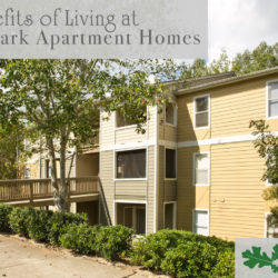Benefits of Living at Brookwood Park Apartment Homes